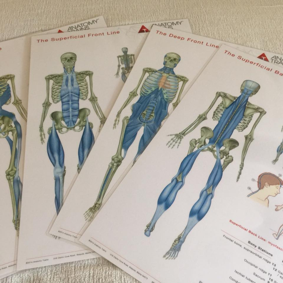 Bindevæv i ryggen kan gøre ondt